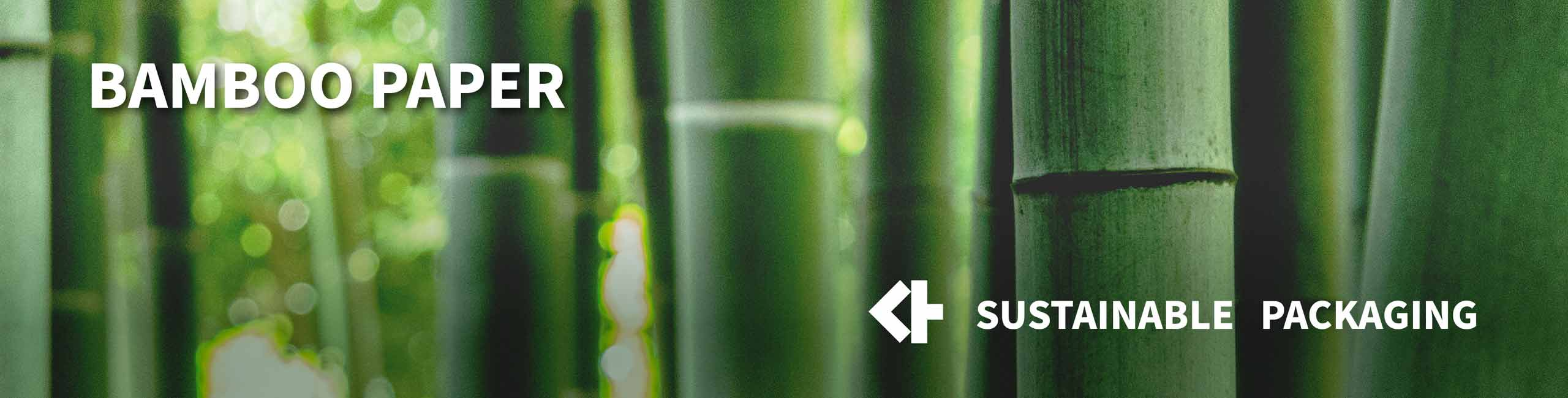 Why is Bamboo Sustainable? The Uses and Benefits of Bamboo Paper
